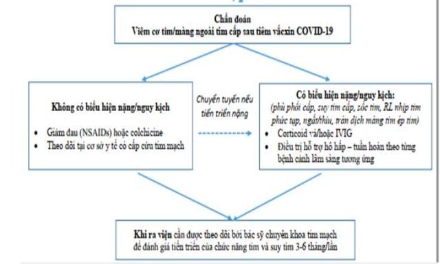 Dấu hiệu viêm cơ tim sau tiêm vaccine COVID-19 - Ảnh 3.